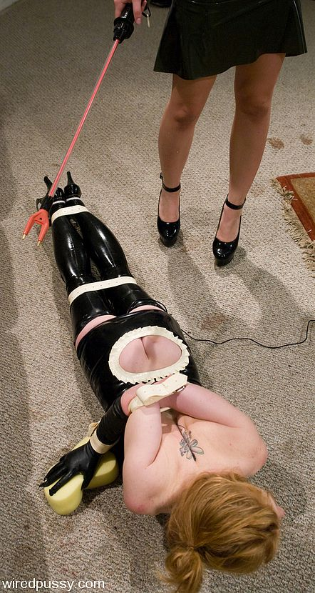 Electric cattle prod sex toy